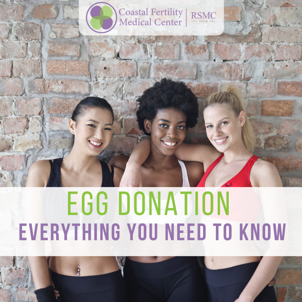 Egg Donation: Everything You Should Know