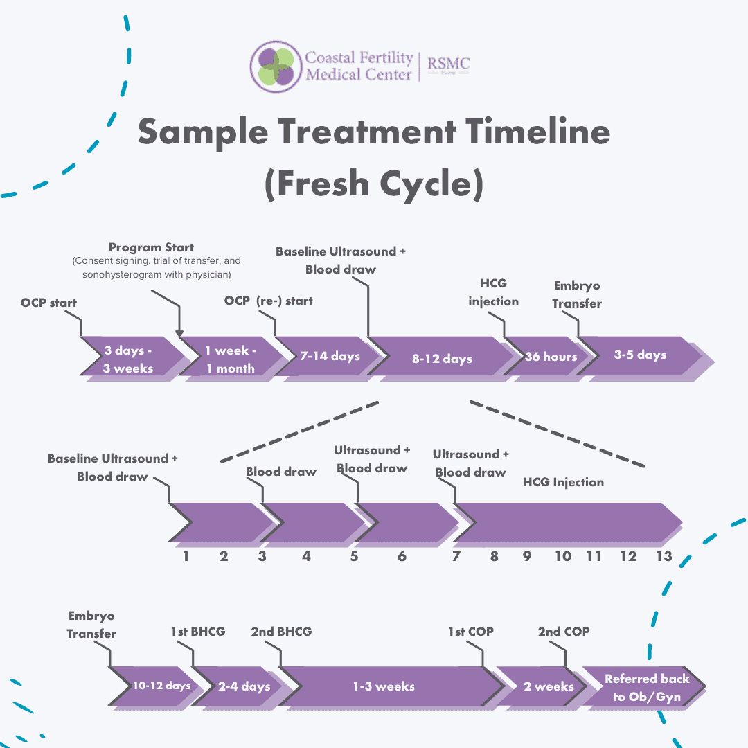 The IVF Process Timeline and Calendar – How Long Does an IVF Process Take?