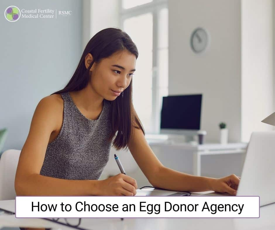 How to Choose an Egg Donation Agency