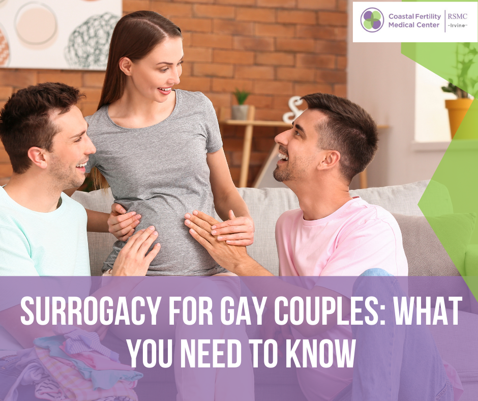 Which Countries Allow Surrogacy for Gay Couples