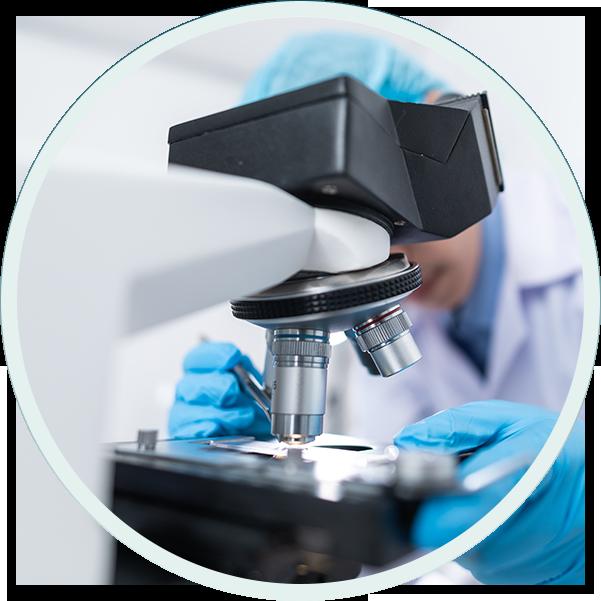 Laboratory Experts